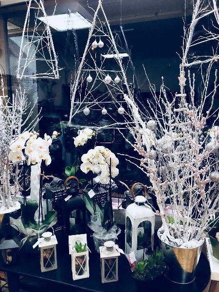 Chez Fior fleurs on vous donne une astuce pour mettre tout le monde d'accord pour Noël  !!!