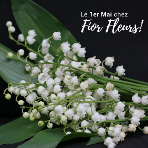 Fior Fleurs vous souhaite un 1er Mai plein de bonheur! Réservez votre muguet chez votre fleuriste
