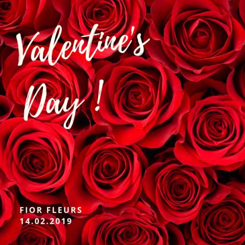 Et vous, vous faites quoi pour la Saint Valentin ?