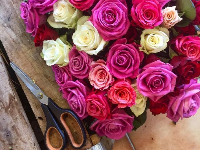 Roses et bouquets de roses