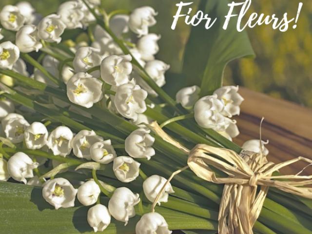Le 1er Mai c'est la fête du muguet, rendez vous chez votre fleuriste Fior Fleurs