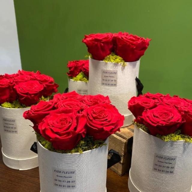 Pavés de roses eternelles